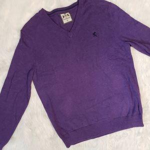 Express Mens V-Neck Purple Long Sleeve Sweater